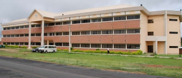 College of Management and Social Sciences